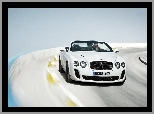 Bentley Continental Supersports, Grafika