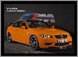 BMW M3 GTS, Coupe