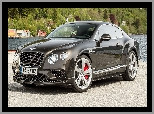 Bok, Bentley Continental GT, Przód