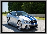 Need for Speed, Shelby, Film, Ford Mustang GT