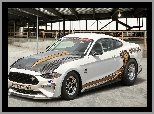 Ford Mustang Cobra Jet, Rajdowy