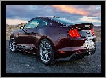 Ford Mustang Shelby Super Snake, Tył
