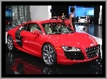 Hostessa, Dealer, Audi R8