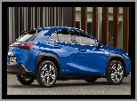 Lexus UX 300e, Electric