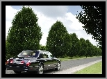Limuzyna, Bentley Arnage Blue Train Series
