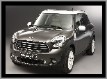 MINI Countryman, Cooper D