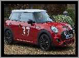 Mini Cooper S Paddy Hopkirk