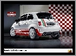 Skorpion, Abarth 500, Rally
